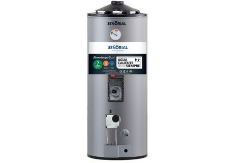 Termotanque-Señorial-Dual-50lts-Family-Conexion-Sup-Gas-Elec